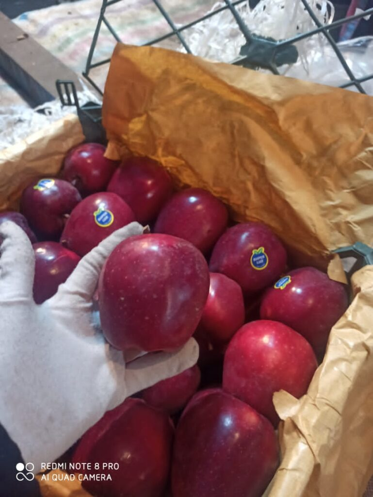 Highest quality of red delicious apples